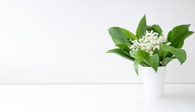 Fiori di primavera mughetto e foglie verdi in vaso bianco. copia spazio.