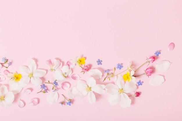 Fiori di primavera su sfondo rosa