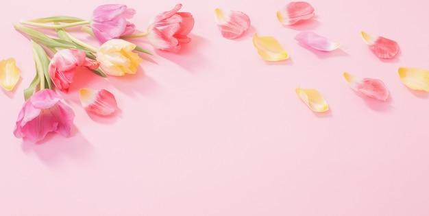 Fiori di primavera sulla superficie rosa