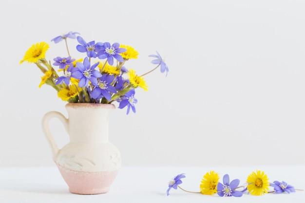 Fiori della primavera in vaso su fondo bianco