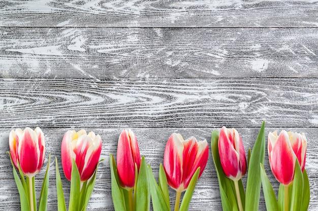Fiori di primavera su legno