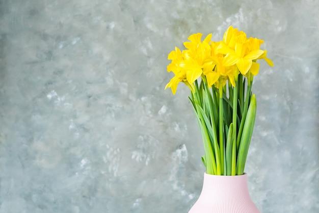 Fiori di primavera, narcisi gialli in un vaso su uno sfondo grigio.