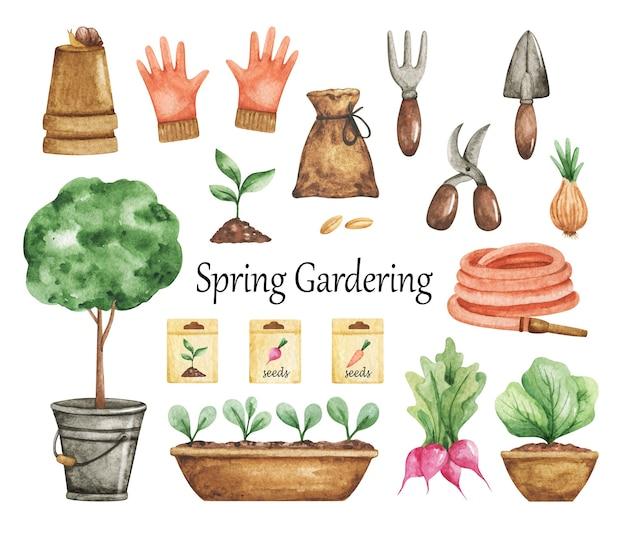 Primavera gardering clipart, set di attrezzi da giardino, elementi del giardino isolati, clipart giardino dell'acquerello