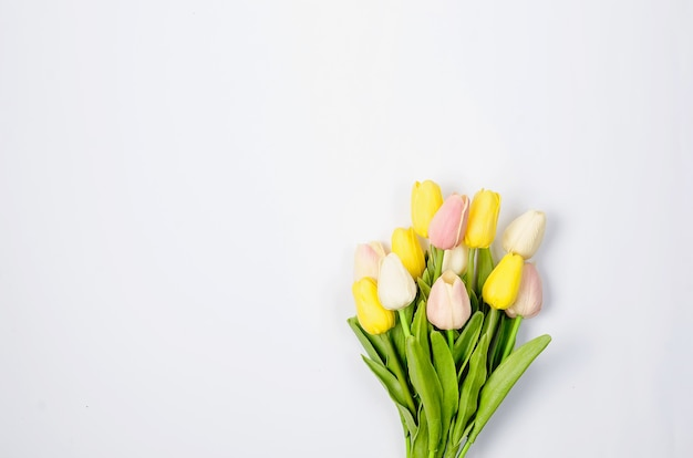 Concetto di primavera o vacanza, un bouquet di tulipani su bianco