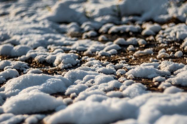 Paesaggio primaverile, l'ultima neve in luoghi appartati. il sole splendente scioglie la neve. pino verde. latifoglie senza foglie. sciogli l'acqua dalla neve. erba gialla dell'anno scorso.
