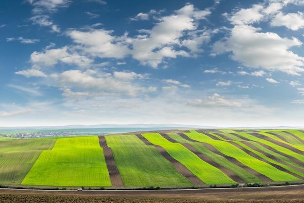 Paesaggio primaverile con campi agricoli