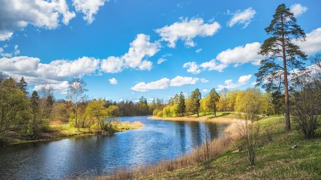 Paesaggio primaverile con un albero in riva al lago