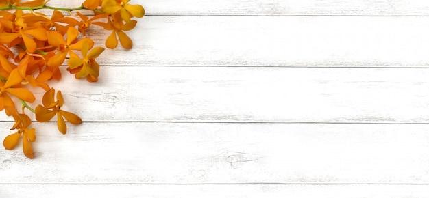 Fiore dell'orchidea della primavera su fondo di legno bianco