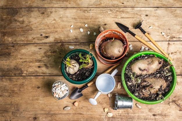 La semina primaverile e il concetto di giardinaggio. attrezzi, annaffiatoio, vasi da fiori, secchi, pietre decorative.