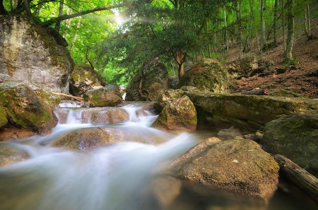 Flusso di ruscello primaverile. composizione della natura.