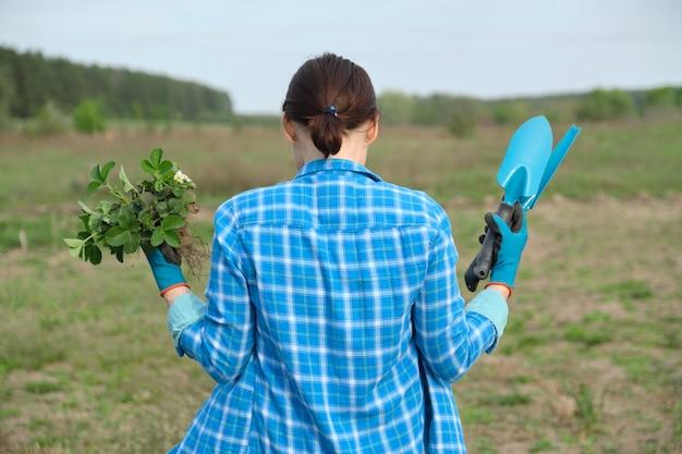 Stagione primaverile, donna che cammina in giardino con cespugli di fragole per la semina e attrezzi da giardino