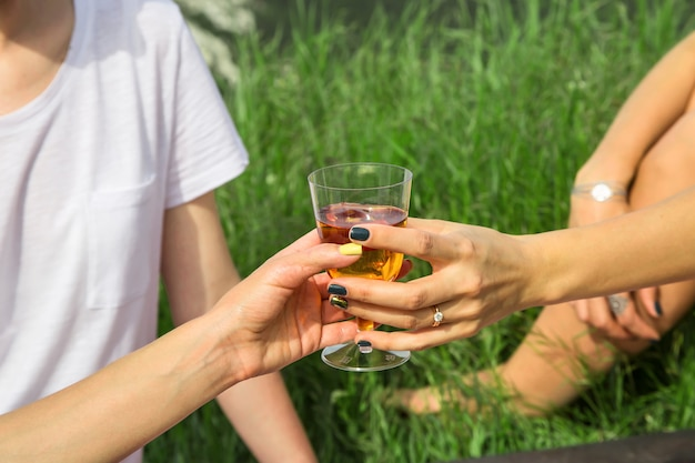 Tempo libero primaverile ed estivo in natura con cibo e vino deliziosi