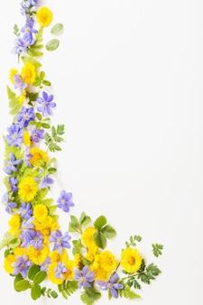 Primavera fiori gialli e viola su sfondo di carta