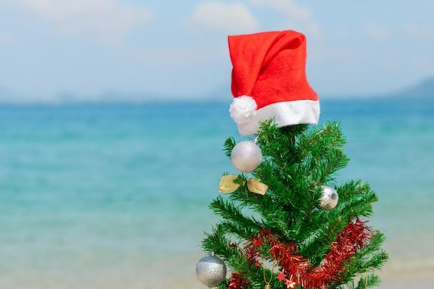Abete rosso in un cappello da babbo natale sulla spiaggia. avvicinamento.