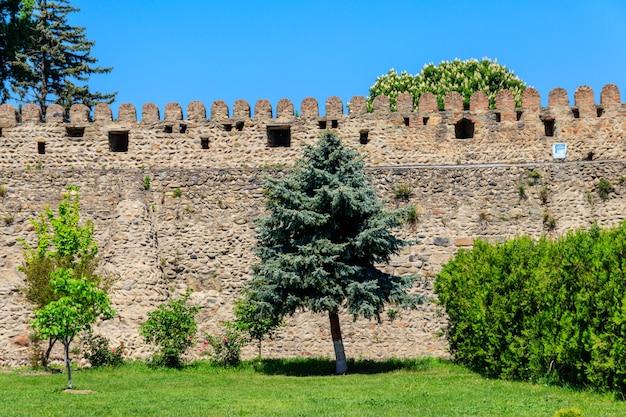 Abeti vicino alla parete di pietra antica della fortezza all'interno del complesso della chiesa di svetitskhoveli a mtskheta, georgia