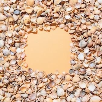 Cornice quadrata di conchiglie su sfondo beige.