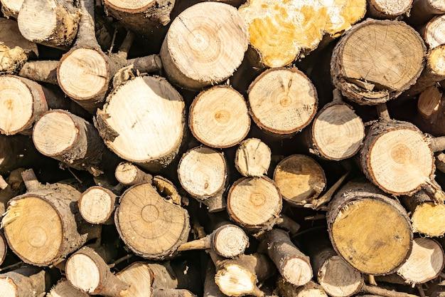 Pila di tronchi segati. sfondo di arredamento in legno naturale.