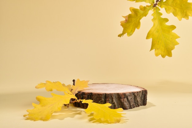 Un palco con una vetrina in legno naturale e foglie di quercia. il podio autunnale per la presentazione di merci e cosmetici è costituito da una barra cilindrica su fondo beige.