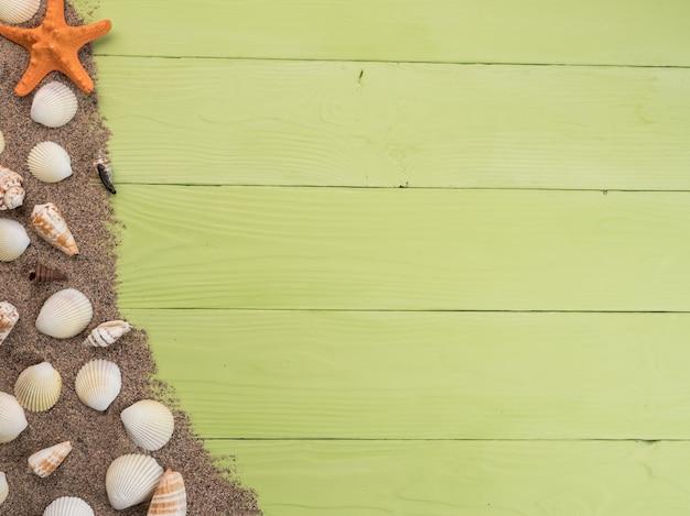 Stelle marine e conchiglie giacciono su sabbia e tavole verdi, vista dall'alto, copia spazio.
