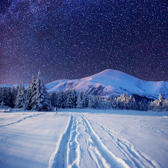Cielo stellato nella notte nevosa di inverno