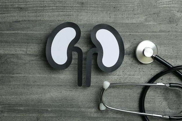 Stetoscopio e reni decorativi su grigio