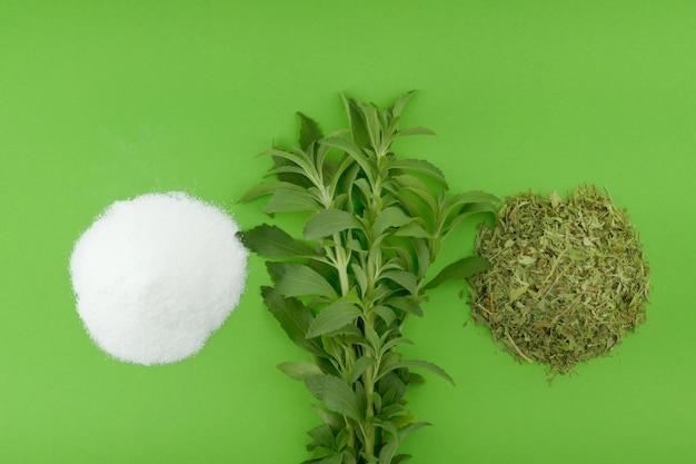 Stevia rebaudiana. rametti di erbe fresche di stevia, stevia tagliuzzata a secco e polvere bianca su verde brillante
