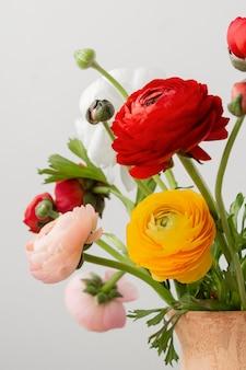 Assortimento di natura morta di fiori interni in vaso