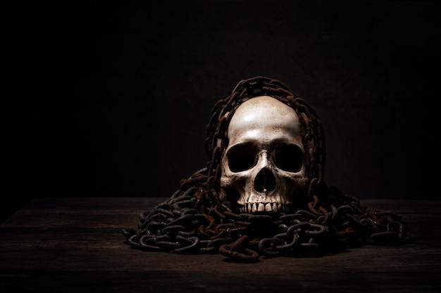 Still life di teschio umano che è morto a lungo,