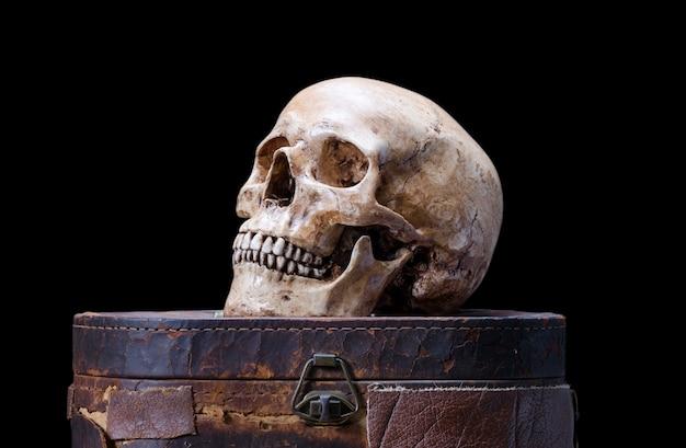 Natura morta con vista laterale del teschio umano su uno sfondo nero
