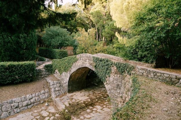 Un ponte di pietra antico ponte di pavimentazione con edera sul fiume di montagna l'area del parco milocher