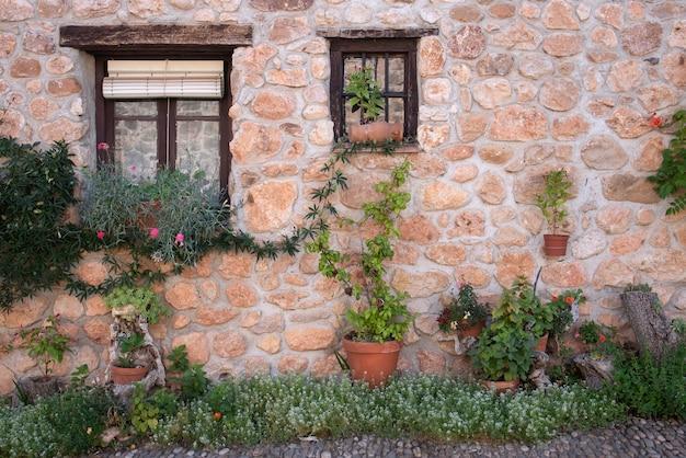 Facciata in pietra con fiori diversi