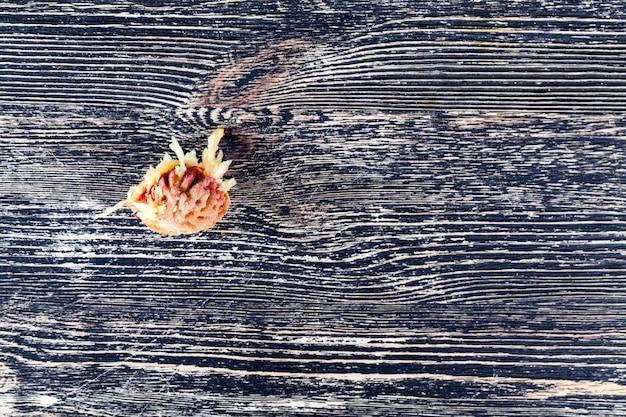 Una pietra della pesca mangiata, giace su un tavolo di legno nero, primo piano