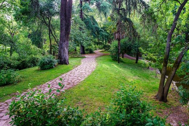 Percorso di pietra nel parco con vegetazione lussureggiante in giornata estiva. madrid.