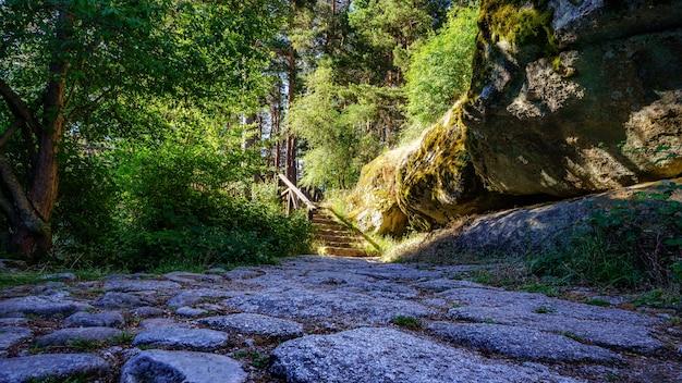 Percorso di pietra nel bosco che conduce a un sentiero illuminato dalla luce del sole. navacerrada.