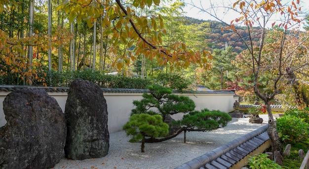 Scalinata di pietra che porta a un bellissimo parco pieno di alberi con foglie verdi e il terreno coperto di muschio