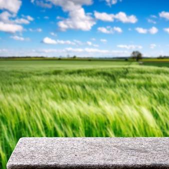 Tavolo in pietra in campo agricolo all'aperto natura luce solare display quadrato sfondo