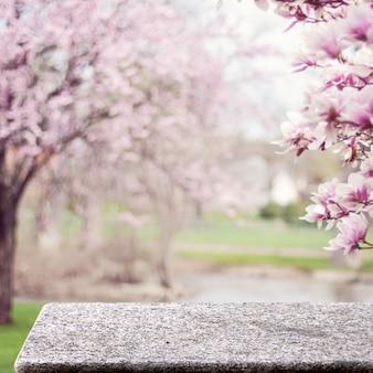 Tavolo in pietra nel giardino all'aperto fiori di ciliegio natura luce solare piazza display sfondo