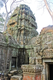 Tempio di pietra in cambogia