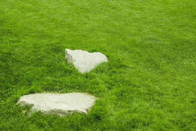 Pietra con sfondo di erba verde per il design del giardino.