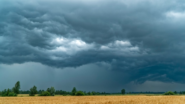 Nuvole temporalesche sul campo di grano