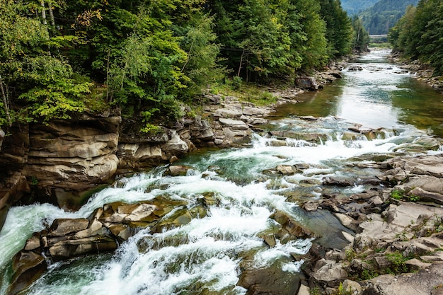 Flusso tempestoso del fiume di montagna tra pietre e alberi