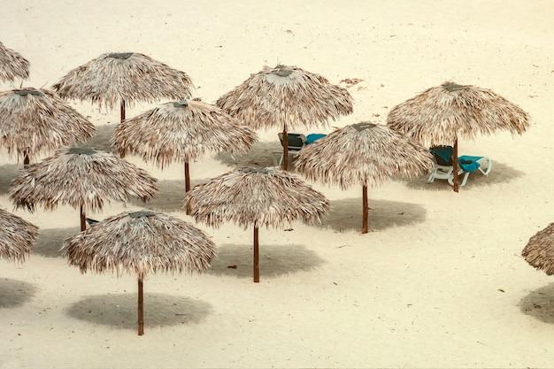 Ombrelloni di paglia sulla spiaggia di varadero, cuba. sfondo vacanza e relax. prendere il sole sulla spiaggia.