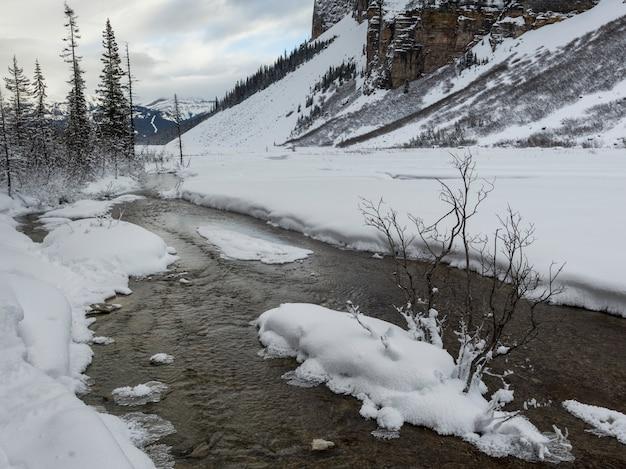 Scorra il flusso nella valle innevata nell'inverno, il parco nazionale di lake louise, banff, alberta, canada