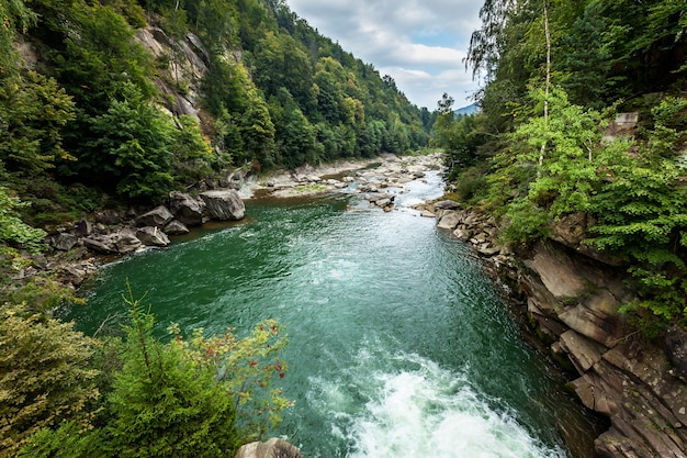Flusso in montagna. flusso del fiume in montagna sulla radice lapidata nella foresta verde. fiume di montagna, fiume di montagna, pesca nei fiumi di montagna, rafting, fiume di montagna