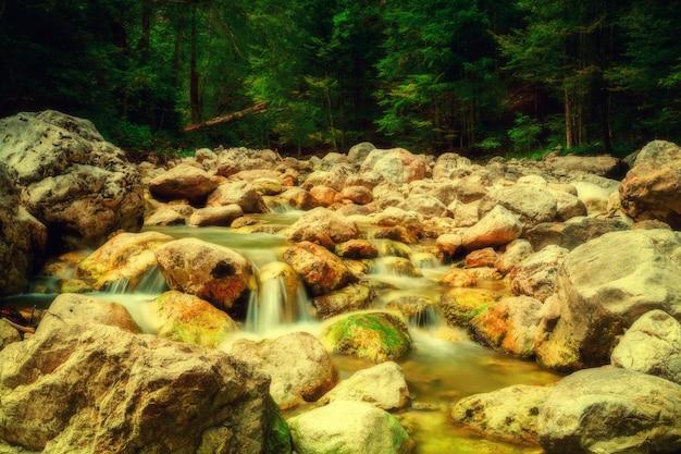 Flusso in montagna nel parco nazionale degli alti tauri in austria.