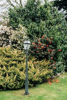 Lampione stradale su un palo in giardino sull'erba con alberi e cespugli con fiori rossi e bianchi.