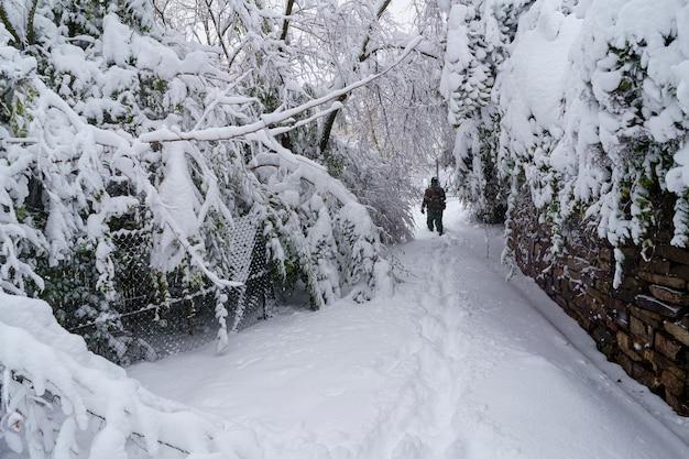 Strade ed edifici coperti di neve di giorno a causa della tempesta di neve filomena che cade a madrid in spagna. persone che camminano nella neve. spagna