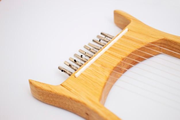 Strumento musicale a lira