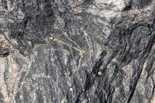 La struttura di una vera pietra di grandi dimensioni è di colore scuro, è realizzata con materiali naturali Foto Premium