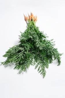 Studio fotografico di un piccolo bouquet di carote, con cime verdi su fondo bianco.